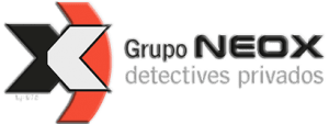 Los Mejores Detectives Privados en Murcia 9