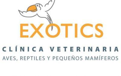 Clinica Veterinaria Exotics