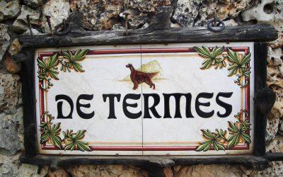 Residencia Canina de Termes